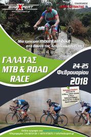 AFISA GALATAS 2018 B small